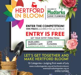 Hertford in Bloom July 2021