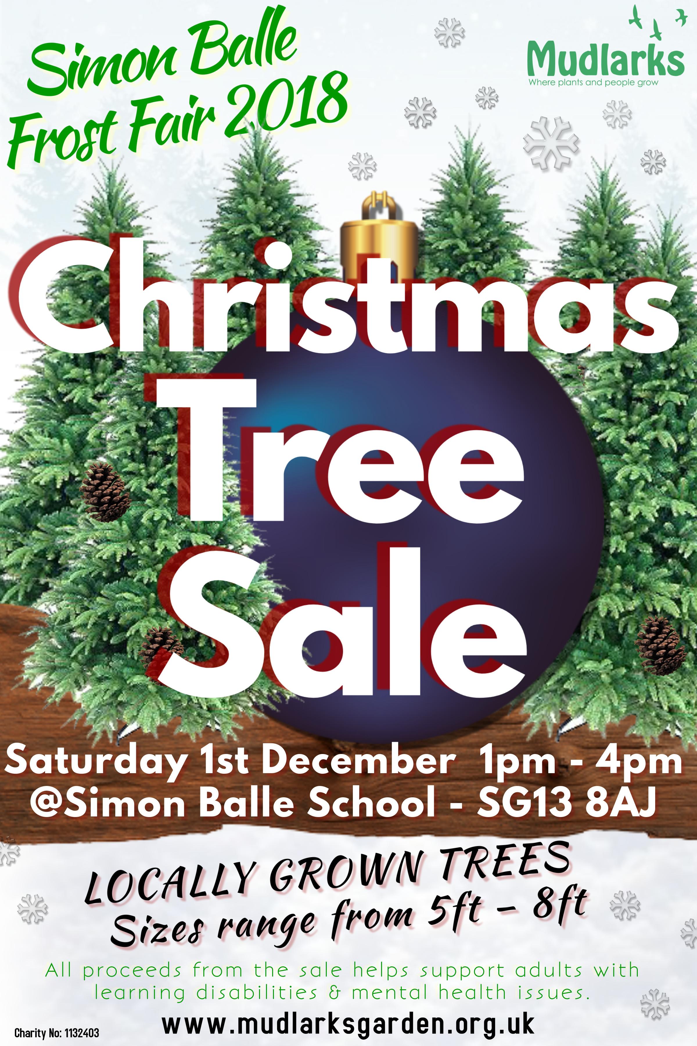Christmas Trees For Sale.Xmas Tree Sale 1st Dec 2018 Mudlarks Garden
