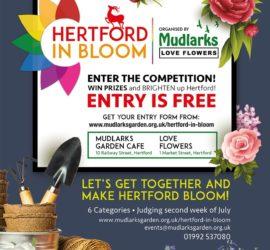 Hertford in Bloom July 2020